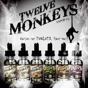 12monkeys_4